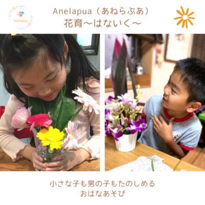 Anelapua(あねらぷあ)