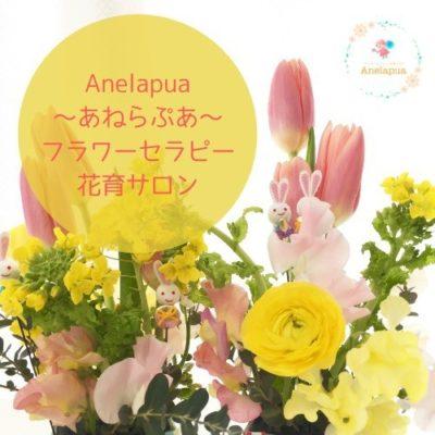 Anelapua(あねらぷあ)フラワーセラピー花育サロン